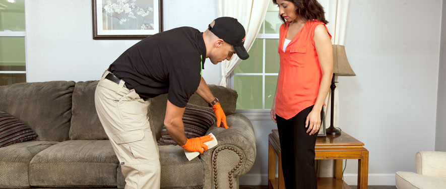 Gaithersburg, MD carpet upholstery cleaning